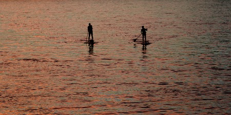 Stand up paddle boarding people on the river Danube, Bratislava, Slovakia