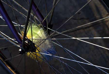 compostion: the rays of afternoon sun on the front wheel of a bicycle wheel