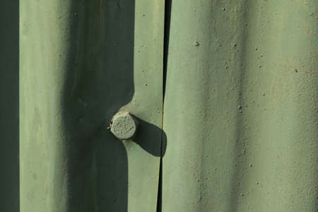 compostion:  green nut on an old green garage door on a summer afternoon