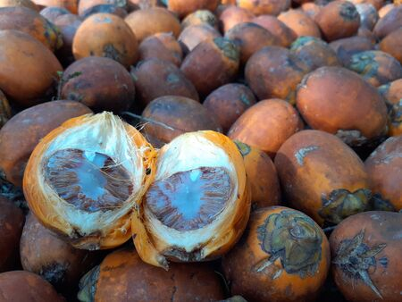 Orange betel nut, is a fruit and food, with a type of palm tree, it is also known as Mak, close up, select focus concept, in the garden, Ranong, Thailand.