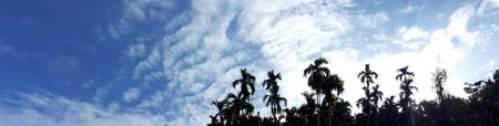 Beautiful photo of nature panorama, with sunlight on the blue sky and white clouds among garden natural area in countryside, Thailand.