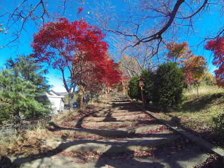 kawaguchi ko: Nikurayama Asama Park