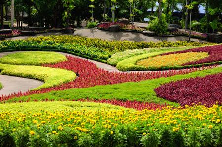 jardines con flores: zona de la flor en los jardines de Nong Nooch Foto de archivo