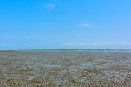 sludge: Sludge on the beach near mangrove forest in Thailand Stock Photo