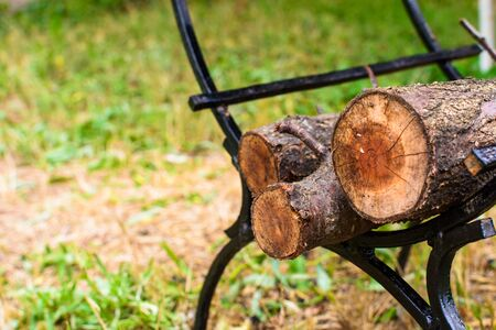 Broken trunks of trees on the wood are folded under barbecue
