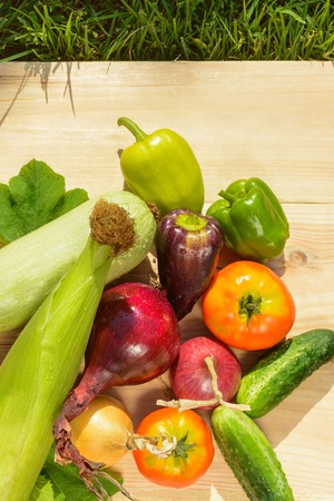 Green dill, purple peppers, tomatoes, zucchini, blue and yellow onion on a wooden background in sunlight