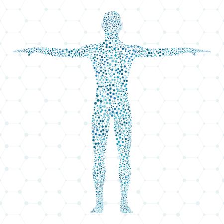 Humano. Estructura de la molécula del hombre. Ilustración del vector. La medicina, la ciencia y la tecnología. Vector científica para su diseño.
