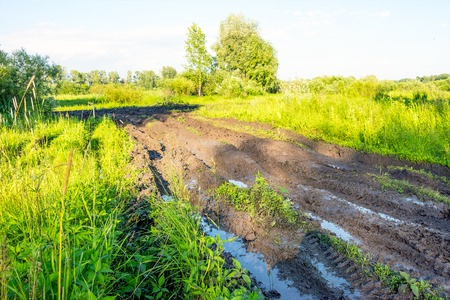 plowing: Dirty road. Off-road. Dirt track in forest Stock Photo