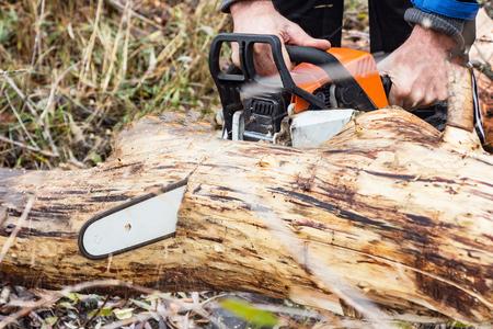 Man Saws petrol saw tree trunk. Selective focus