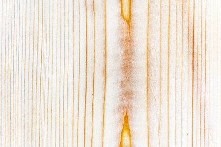Wood texture closeup for background. Wood texture pine