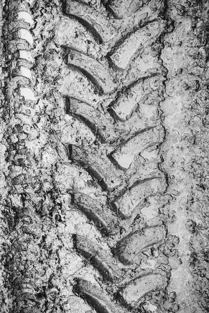Imprint of an off-road vehicle tire on a dirty dirt road Stock fotó