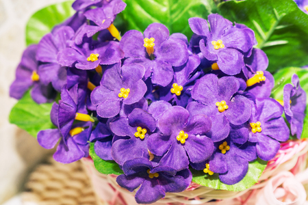 Beautiful bouquet of artificial lilac violets. Viola odorata