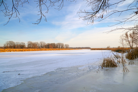 Winter landscape. Frozen river, forest in the distance, dry sedge and blue cloudy sky