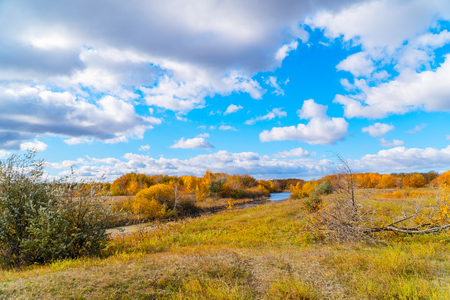 Autumn landscape. Blue sky with clouds, small river, orange leaves on trees