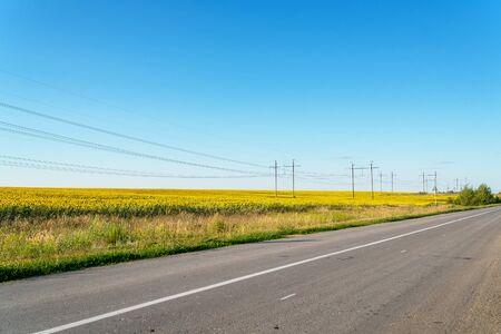 Asphalt road near the field of sunflowers against the blue sky