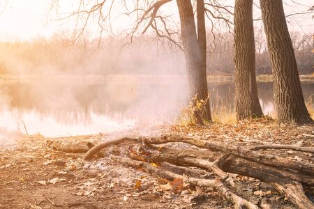 Burning campfire in the sunlight on the shore of an autumn forest lake Banco de Imagens