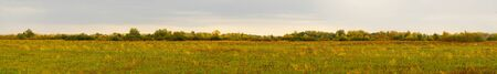 Panorama of a large autumn meadow on a cloudy day Banco de Imagens