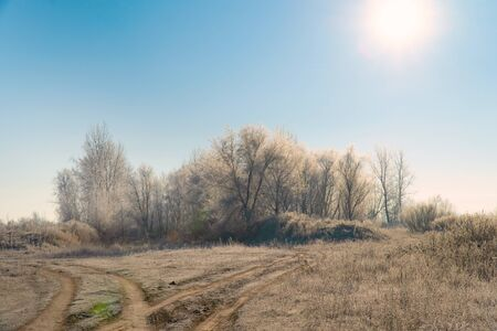 Early winter. The sun over Meadows, bushes and trees covered with frost. Fabulous Winter landscape
