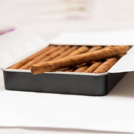 Box of cigarillos on a white background. On the box is one cigarillo. Selective focus