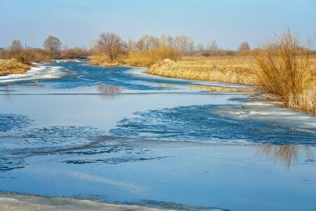 Spring flood on the river. High water. Spring landscape