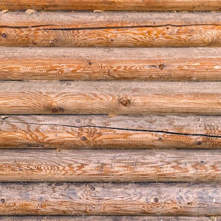Log wall texture for background and design