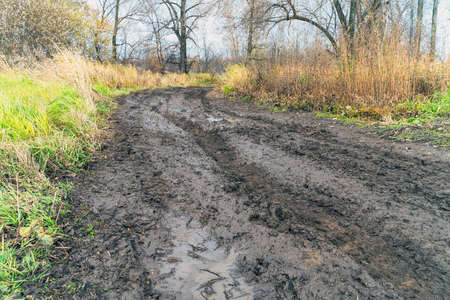An impassable road, off-road track in autumn forest. Stockfoto