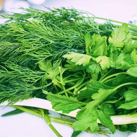 Freshly picked garden plants seasonings dill and parsley on the table Zdjęcie Seryjne