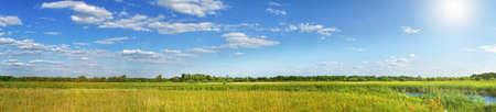 Panorama of a summer meadow against a blue sky with clouds in the sunlight. Summer landscape