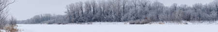 Panorama Winter forest with dark trees on a frozen river Stock Photo