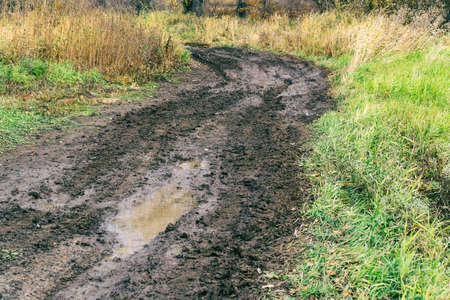 Impassable road, off-road track in autumn forest Stockfoto