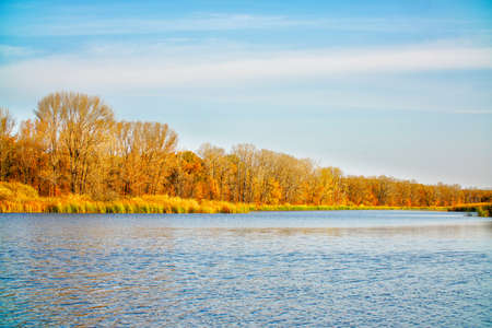 Blue sky over autumn orange forest and lake with blue water
