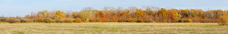 Panorama Autumn forest in front of a meadow against a blue sky