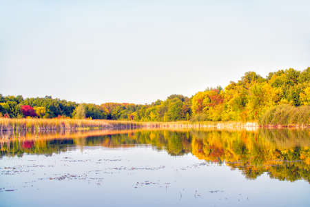 View of the autumn forest with yellow and red foliage and a beautiful lake against the background of light sky