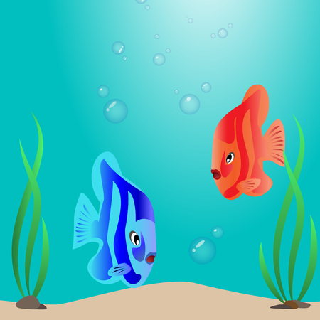 meet: Two colorful tropical fishes meet on the seabed.