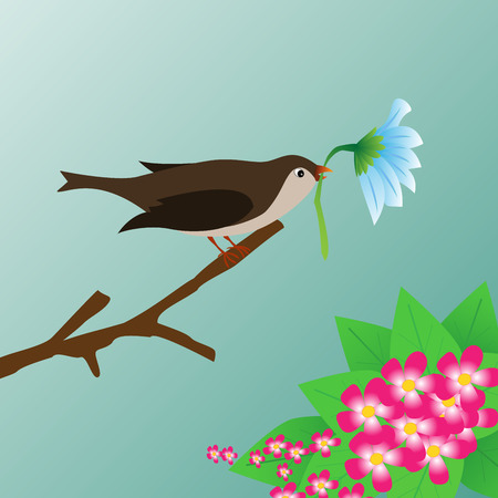 two birds: Two birds and blossom cherry branches spring.. Illustration