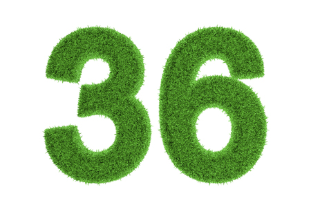 conserving: Number 36 with a fresh green grass texture and a three dimensional effect conceptual of an eco-friendly font and conserving nature, isolated on white