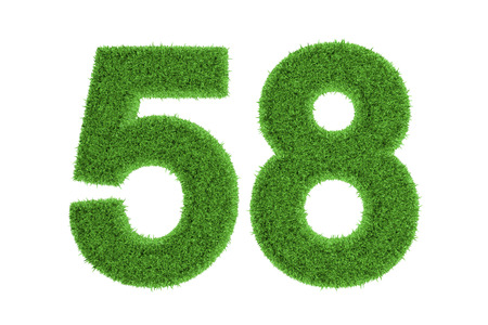 Green eco-friendly symbol of number 58  fifty-eight , filled with grass pattern, isolated on white background photo
