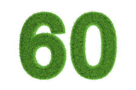 sixty: Green eco-friendly symbol of the anniversary number 60  sixty , filled with grass pattern, isolated on white background