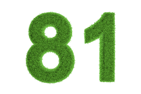 81: Number 81 with a green grass texture and a three dimensional effect conceptual of an eco-friendly font and conserving nature, isolated on white Stock Photo