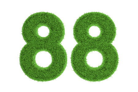 conserving: Number 88 with a green grass texture and a three dimensional effect conceptual of an eco-friendly font and conserving nature, isolated on white
