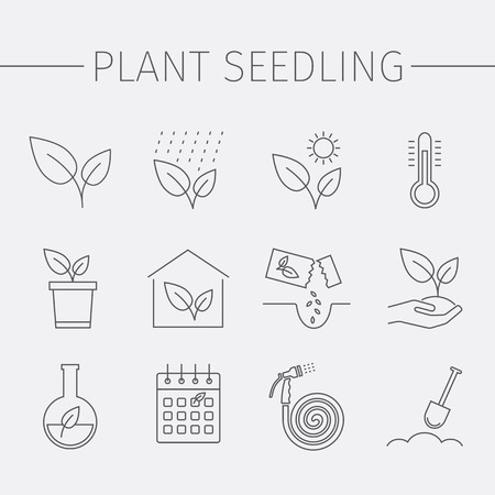 Growing plants line icons set. Plant seedling sign. Vector Illustration