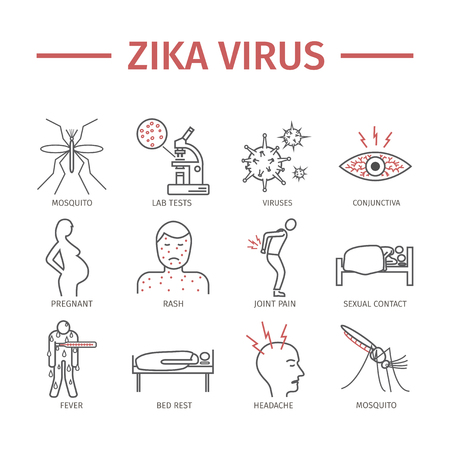 Zika Virus lijn pictogram Infographics. Symptomen, Vectorborden voor webafbeeldingen.