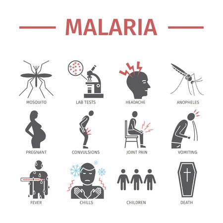 Infografía de icono plano de malaria. Síntomas, signos de gráficos web. Ilustración de vector