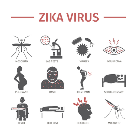 Zika Virus icon Info-graphics. Symptoms, vector signs for web graphics. Illustration