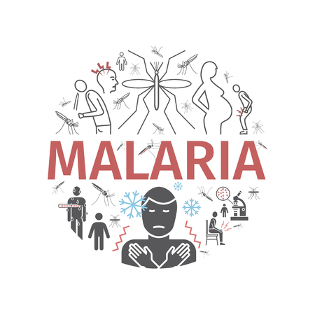 Malaria line icon banner. Info-graphics. Symptoms, vector signs for web graphics.