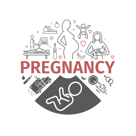 Pregnancy banner. Line icons set. Infographics. Vector signs for web graphics. Illustration