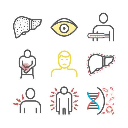 Infografía de icono de línea de hepatitis. Síntomas, tratamiento. Signos vectoriales para gráficos web. Ilustración de vector