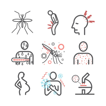 Malaria line icon Infographics. Symptoms, Treatment. Vector signs for web graphics.