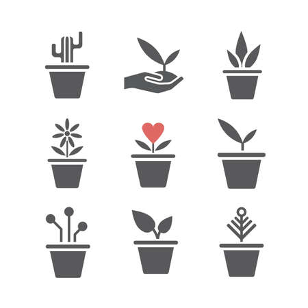 Set of plants in a pot. Vector signs for web graphics.