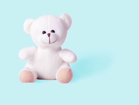 teddy bear isolated on pink